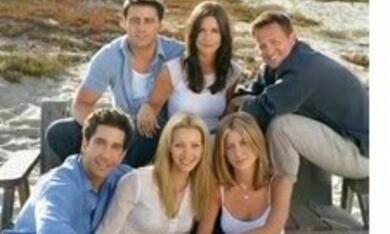 Friends - Bild 7