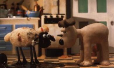 Wallace & Gromit unter Schafen - Bild 7