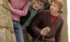 Harry Potter und der Gefangene von Askaban mit Emma Watson, Daniel Radcliffe und Rupert Grint - Bild 32