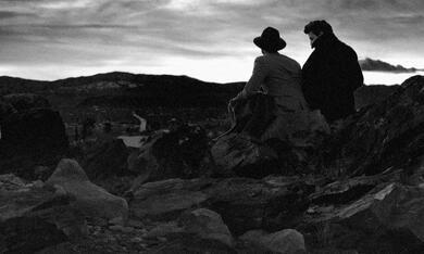 Der junge James Dean - Joshua Tree 1951 - Bild 5