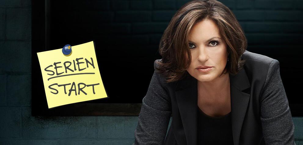 Law & Order: New York, Staffel 17