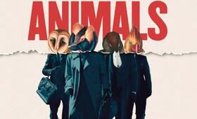 American Animals - Bild 7