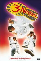 3 Ninjas Fight & Fury - Poster