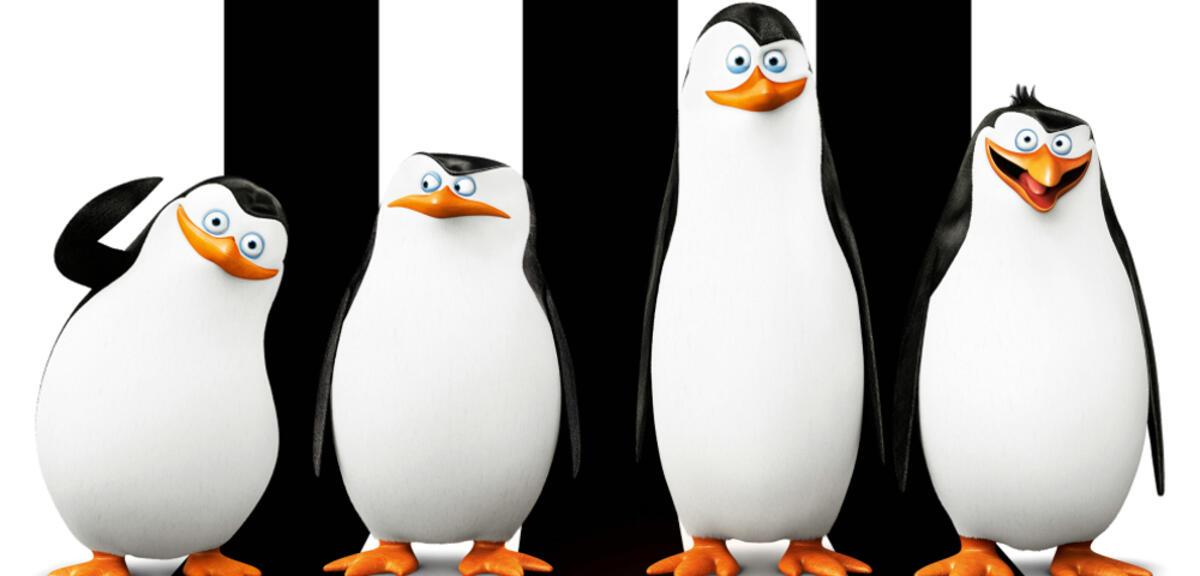 pinguine aus madagascar erleben abenteuer  ruhm