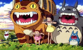 Mein Nachbar Totoro Horror