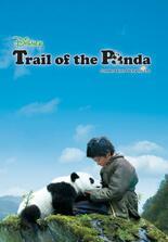 Die Spur des Panda