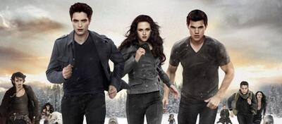 Wer wird das Erbe von Twilight antreten können?