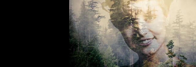 Twin peaks 2017 banner