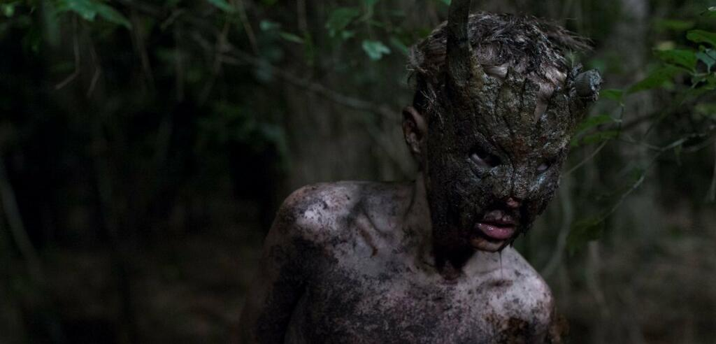 Horror aus dem Wald