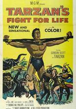 Tarzans Kampf ums Leben