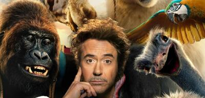 Robert Downey Jr. in Die fantastische Reise des Dr. Dolittle