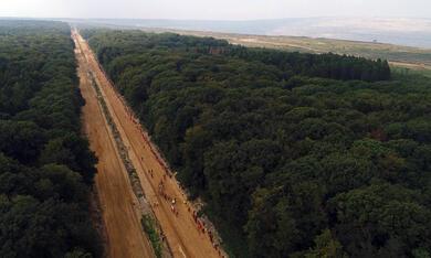 Die rote Linie - Vom Widerstand im Hambacher Forst - Bild 3