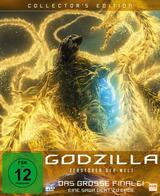 Godzilla: Zerstörer der Welt - Poster