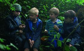 Von Bananenbäumen träumen - Bild 9