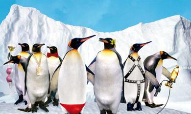 Die verrückte Reise der Pinguine - Bild 1