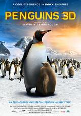 Ein Pinguin kommt selten allein - Poster