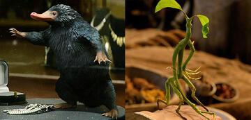 Phantastische Tierwesen und wo sie zu finden sind: der Niffler und Bowtruckle Picket