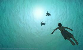 Die rote Schildkröte - Bild 12