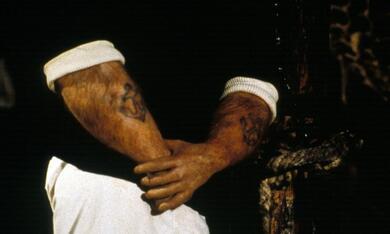 Popeye - Der Seemann mit dem harten Schlag mit Robin Williams - Bild 4