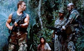 Predator mit Arnold Schwarzenegger - Bild 15