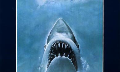 Der weiße Hai - Bild 12