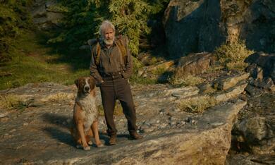 Ruf der Wildnis mit Harrison Ford - Bild 12