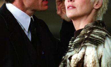 Catwoman mit Sharon Stone und Lambert Wilson - Bild 6
