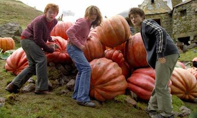 Harry Potter und der Gefangene von Askaban mit Emma Watson, Daniel Radcliffe und Rupert Grint - Bild 5