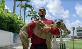 Pain & Gain mit Anthony Mackie - Bild 21