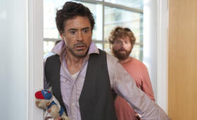 Stichtag mit Robert Downey Jr. - Bild 8