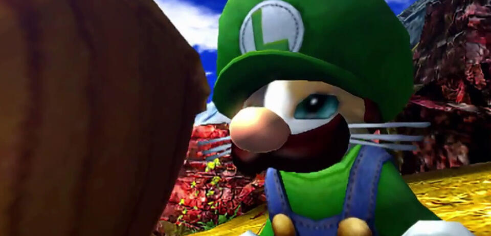 Luigi in Monster Hunter 4 Ultimate