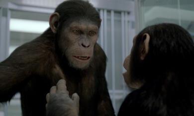 Planet der Affen: Prevolution - Bild 6