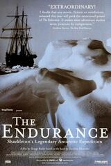 Endurance - Verschollen im Packeis - Poster