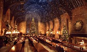 Harry Potter und die Kammer des Schreckens - Bild 11