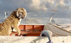 Life of Pi: Schiffbruch mit Tiger - Bild 13