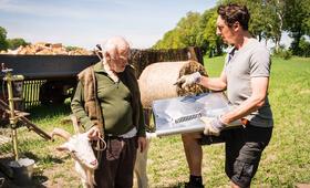Hausbau mit Hindernissen mit Hans Löw und Peter Franke - Bild 3