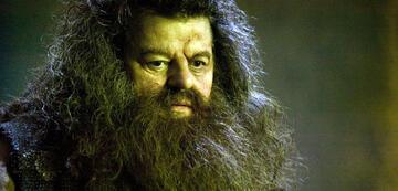 Hagrid: Nach der Harry Potter-Reihe auch bei den Tierwesen