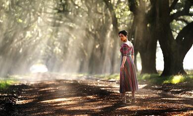 Preacher - Staffel 3 mit Ruth Negga - Bild 6