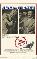 Die Professionals - Poster