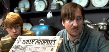 Harry Potter und der eingestreute Lupin