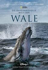 Die geheimnisvolle Welt der Wale - Poster