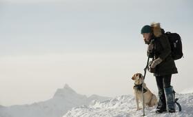 Zwischen zwei Leben - The Mountain Between Us mit Kate Winslet - Bild 20