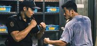 Bild zu:  Lethal Warrior – ab sofort auf DVD und Blu-ray erhältlich