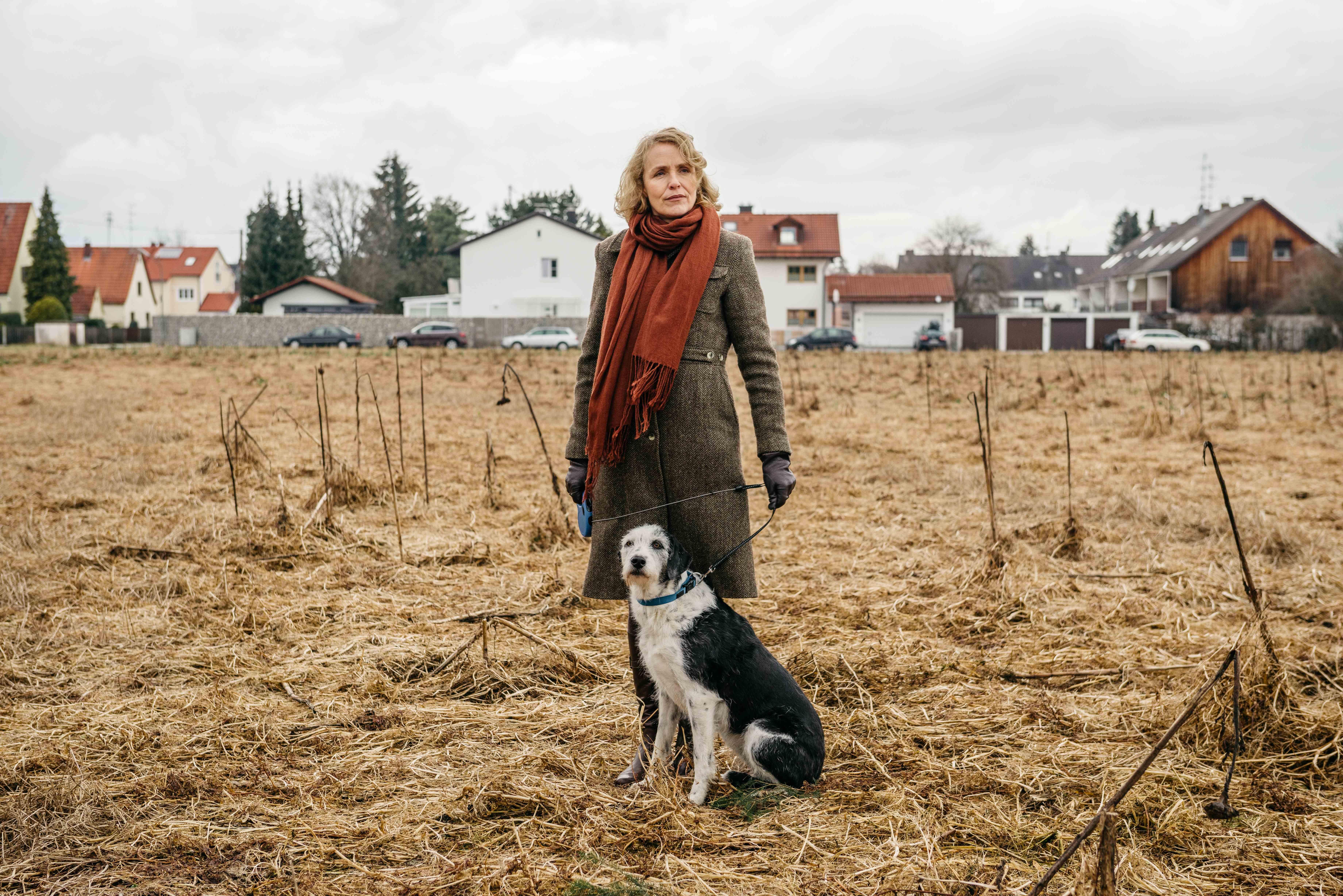 Der Hund Begraben Film