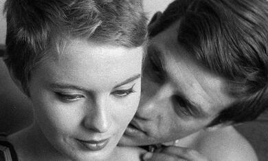 Außer Atem mit Jean-Paul Belmondo und Jean Seberg - Bild 3