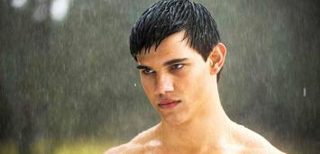 Bild zu:  Taylor Lautner in Twilight