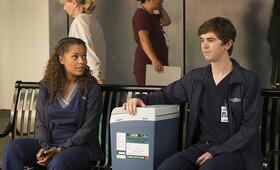 The Good Doctor, The Good Doctor Staffel 1 mit Freddie Highmore und Antonia Thomas - Bild 21