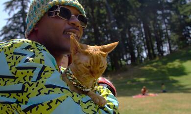 Cat People, Cat People - Staffel 1 - Bild 5