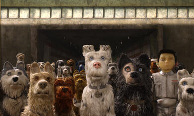 Isle of Dogs - Ataris Reise - Bild 2