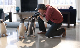 Mr. Poppers Pinguine - Bild 12